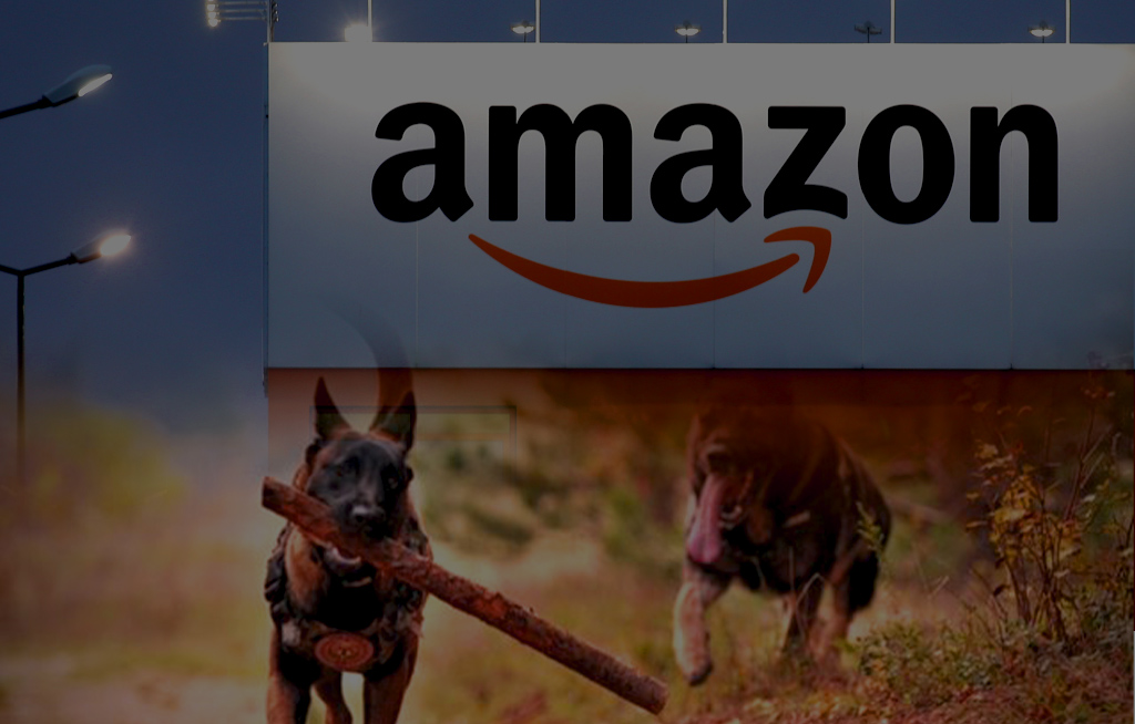 Amazon to Deal with Watchdog to Renovate Market Terms