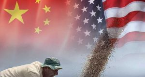 China settled to purchase more US Soybean to reach on trade agreement